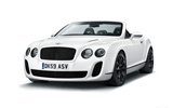 Bentley Continental Supersports Convertible - 2010 HD обои #46