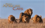 African Cats: Kingdom of Courage 非洲貓科:勇氣國度 #6