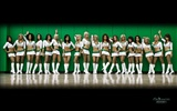 NBA 2010-11 season, the Celtics cheerleaders wallpaper