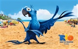 Rio 2011 wallpapers #2