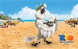 Rio 2011 wallpapers #12