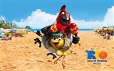 Rio 2011 wallpapers #14