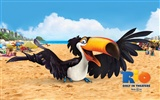 Rio 2011 wallpapers #17