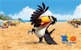 Rio 2011 wallpapers #18