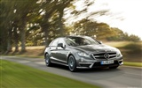 Mercedes-Benz AMG CLS63 - 2010 HD Wallpaper #14