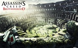 Assassin's Creed: Brotherhood HD wallpapers #13