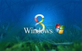 Windows 8 主題壁紙 (二)