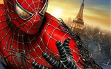The Amazing Spider-Man 2012 wallpapers #13