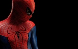 The Amazing Spider-Man 2012 wallpapers #14