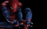 The Amazing Spider-Man 2012 wallpapers #16