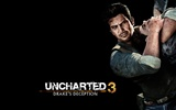 Uncharted 3: Drake Deception HD wallpapers #8