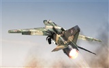 Military fighter HD widescreen wallpapers #9