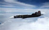Military fighter HD widescreen wallpapers #10