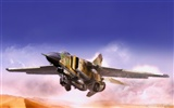 Military fighter HD widescreen wallpapers #11
