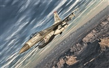Military fighter HD widescreen wallpapers #12