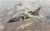 Military fighter HD widescreen wallpapers #15