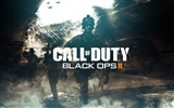 Call of Duty: Black Ops 2 HD wallpapers #10