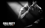Call of Duty: Black Ops 2 HD wallpapers #11