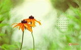 August 2012 Kalender Wallpapers (2)