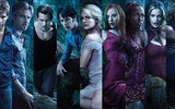 True Blood сериал HD обои #4