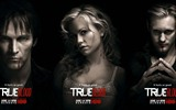 True Blood сериал HD обои #5