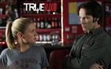 True Blood сериал HD обои #18
