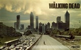 The Walking Dead HD wallpapers #5