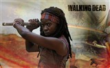 The Walking Dead HD wallpapers #6