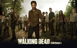 The Walking Dead HD wallpapers #7