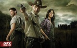 The Walking Dead HD wallpapers #8
