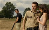 The Walking Dead HD Wallpaper #12