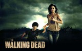 The Walking Dead HD wallpapers #13