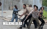 The Walking Dead HD wallpapers #17