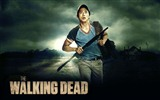 The Walking Dead HD Wallpaper #18