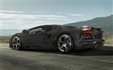 2012 Lamborghini Aventador LP700-4 HD Wallpaper #27
