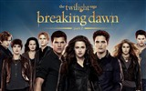 The Twilight Saga: Breaking Dawn fondos de pantalla HD