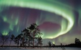 Natural wonders of the Northern Lights HD Wallpaper (2) #13