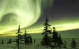 Natural wonders of the Northern Lights HD Wallpaper (2) #18