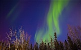 Natural wonders of the Northern Lights HD Wallpaper (2) #20