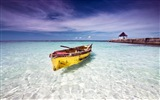Windows 8 Wallpaper: Caribbean Shores