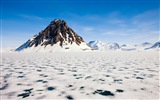 Windows 8 Wallpapers: Arctic, the nature ecological landscape, arctic animals