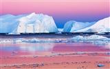 Windows 8 Wallpapers: Arctic, the nature ecological landscape, arctic animals #7