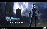 DC Universe Online HD game wallpapers #13