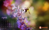 April 2013 Kalender Wallpaper (1)
