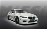 2013 Hamann M5 Mi5sion luxury car HD wallpapers