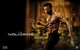 Die Wolverine 2013 HD Wallpaper