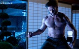 The Wolverine 2013 HD wallpapers #6