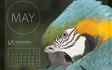 May 2014 calendar wallpaper (2) #16