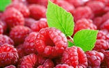Sweet red raspberry HD wallpapers