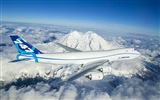 Boeing 747 airliner HD wallpapers #5